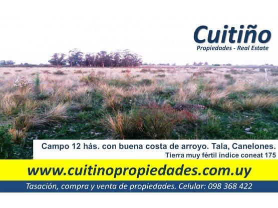 Campo 12 has. agricola coneat 175 con arroyo