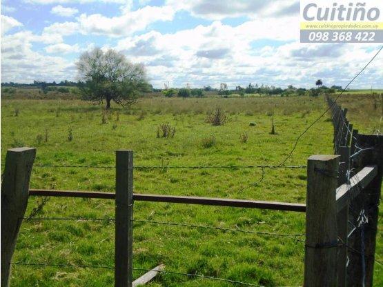 Campo 2 hectáreas sobre ruta en Tala, Canelones