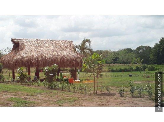 LOTES DE OPORTUNIDAD EN TURBACO - EL NISPERAL
