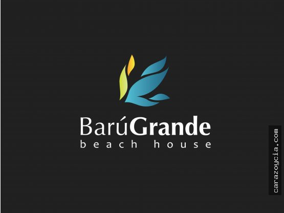 BARU GRANDE - PROYECTO EXCLUSIVO EN BARÚ