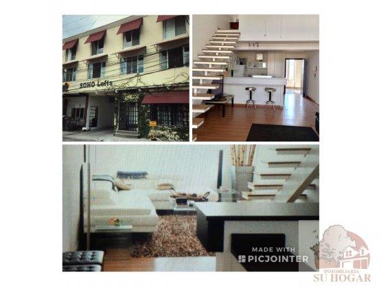 Alquiler:Apartamento tipo Loft en Col.Palmira