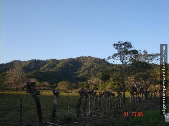 Finca para desarrollo en Paquera, Puntarenas