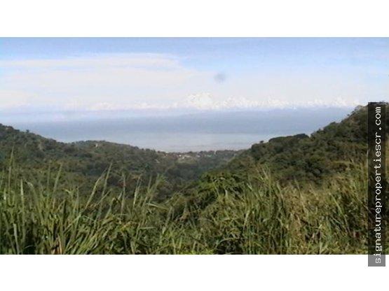 Finca de 29 hectáreas, Tárcoles.