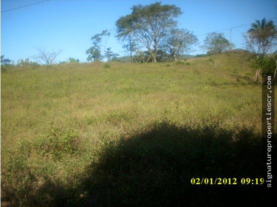 Finca sobre carretera Nicoya-Samara, Guanacaste
