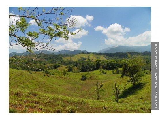 Finca ganadera de 438 hectáreas, Quepos