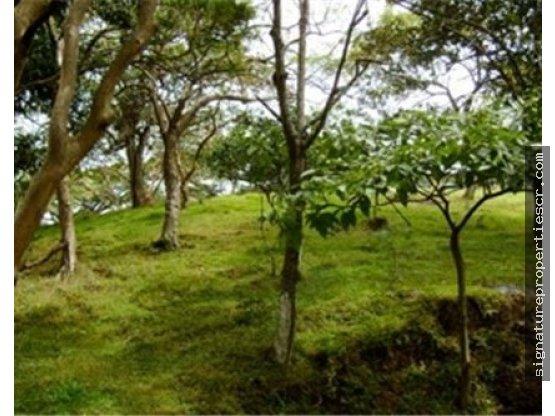 Excelente lote para desarrollo, Guachipelín, Pozos