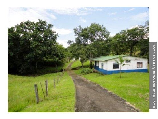Finca de 23 ha ubicada en Cebadilla de Alajuela