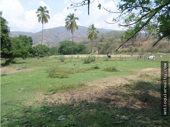 Lote Urbano Santafe de Antioquia
