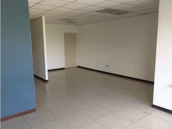 Oficina en renta, 6 ambientes, zona 10