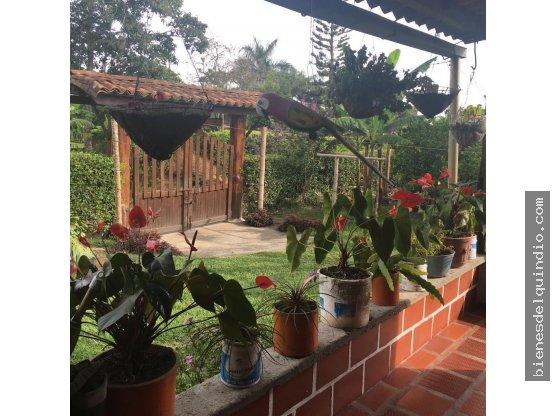 Finca en Vereda la Julia Circasia, Quindío