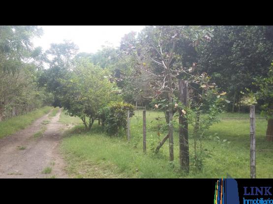 Terrenos en Venta en Tonosí | Los Santos