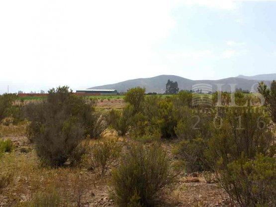Venta de dos terrenos en Ceres 5.000 mts² c/u