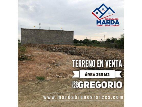 T13 TERRENO EN SAN GREGORIO