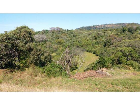 Finca de 7.1 hectareas en Alajuela $20m2