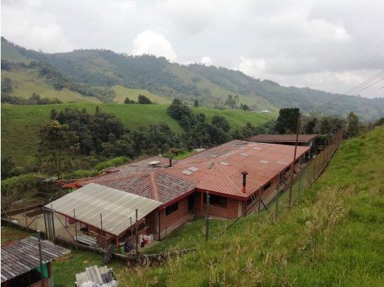 Venta de Finca - vereda Gallinazo - Villa María.