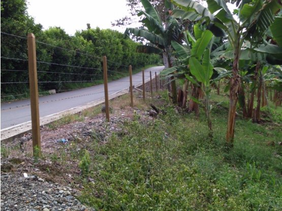 Venta de Finca - Vda Santana - Quimbaya - Quindío.