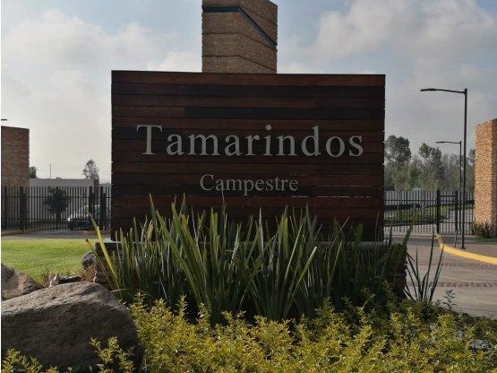Terreno en venta fracc Tamarindos