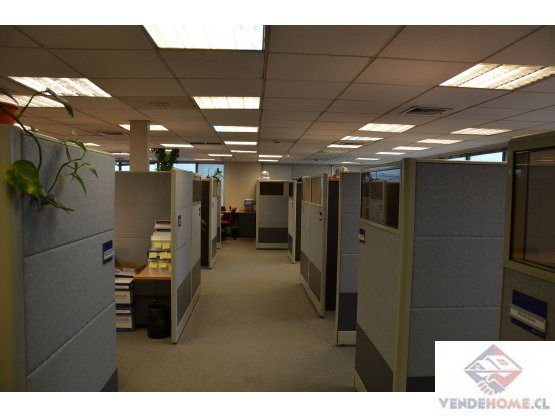 Arriendo oficinas pisos completos P.Valdivia