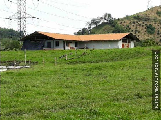 Finca Lechera en La Pintada Antioquia