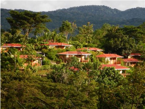 Beautiful Hotel  the best area for birdwatchers