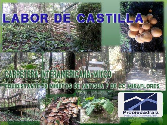 Terrenos  Labor de Castilla Carr Inter/D