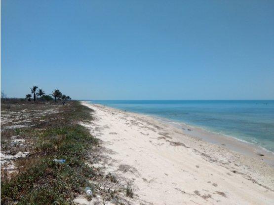 Terreno con Playa en Carretera Champotón - Islaguada