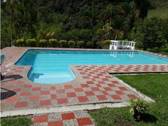 Vendo Finca en Fredonia Antioquia