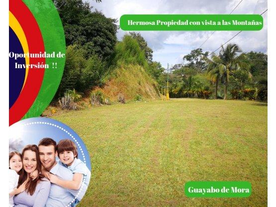 Se vende Propiedad en Guayabo de Mora