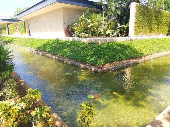 Casa de una planta con 489m2 alberca zona norte for Casa con piscina zona norte merida