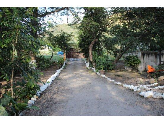 Se vende finca en Flores, Comayagua, Honduras.