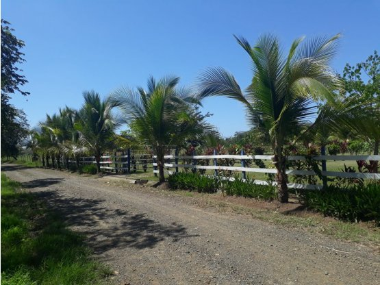 Playa Hermosa cerca de Mistico Jaco 7.7 hectareas