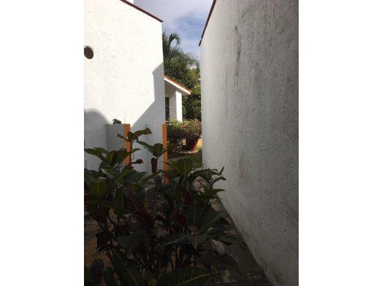 Cuernavaca, Acapantzingo terreno comercial renta