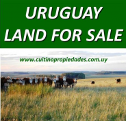 Uruguay land for sale farm farmland farming
