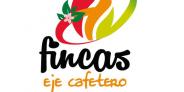 Fincas Eje Cafetero